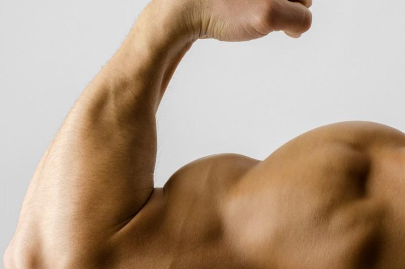 développer vos muscles